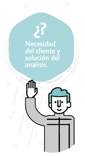 Necesidad del cliente y soluciones del análisis